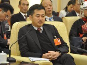 丁世忠:制定国家级产业战略提升中国品牌全球影响力
